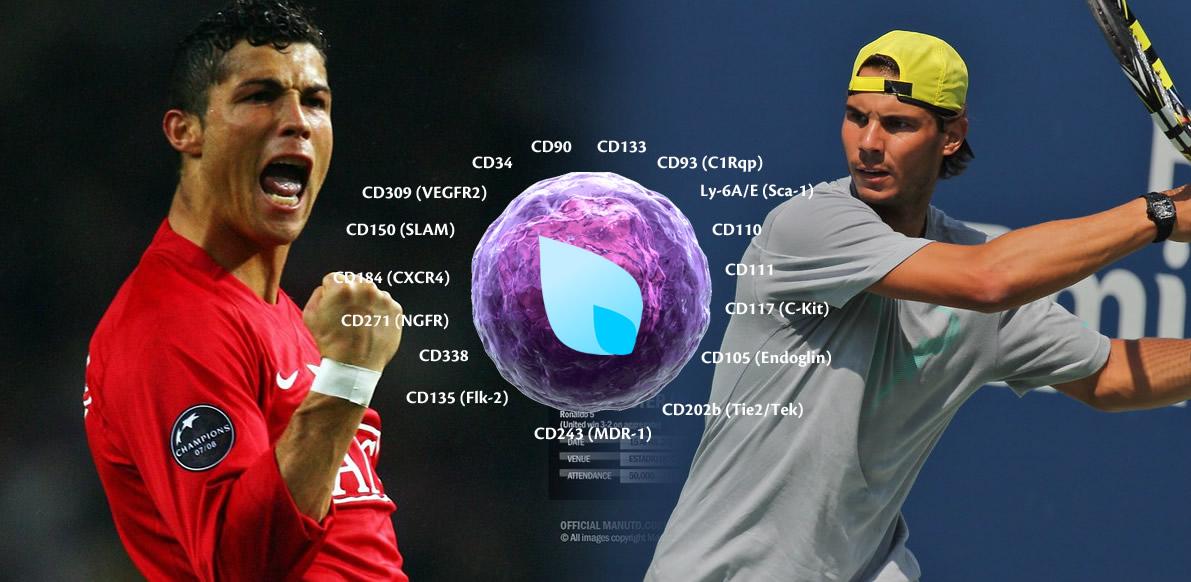Terapia Cellulare, Terapia Rigenerativa HairClinic, Cristiano Ronaldo, Rafael Nadal, Dott. Mauro Conti